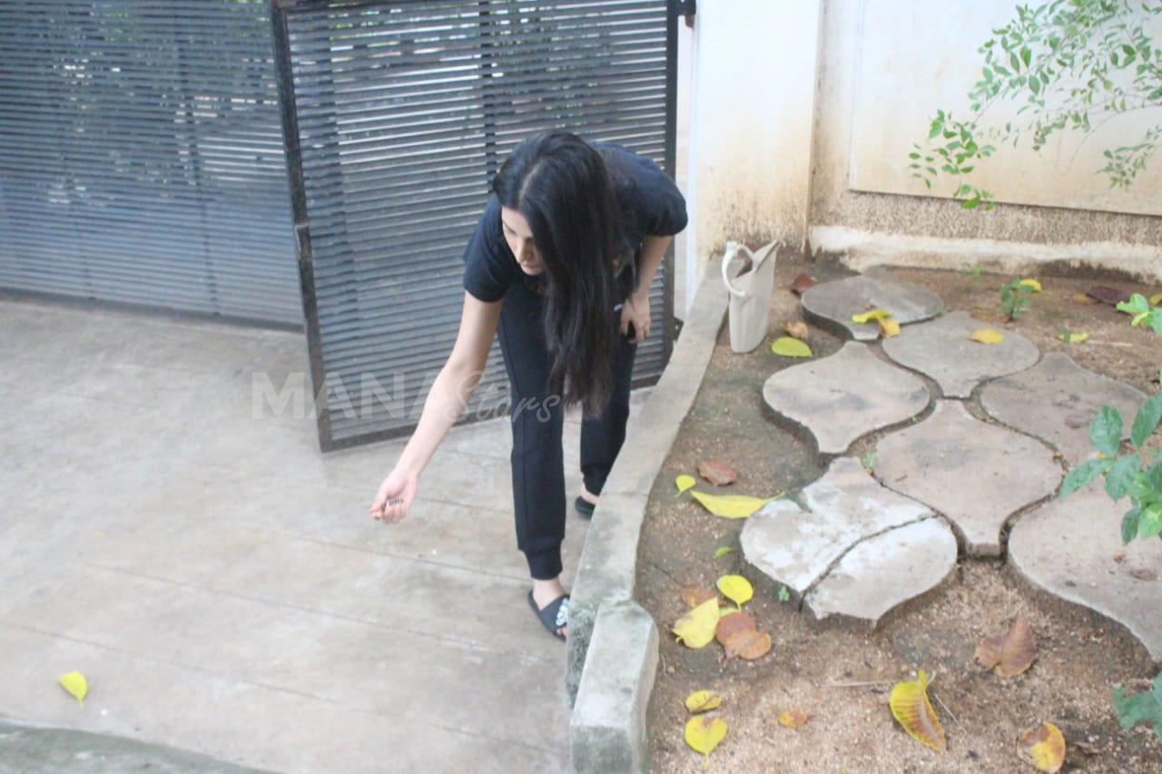 Photo of Shruti Haasan Feeding Food To Stray Dogs